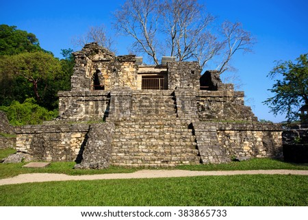 Ancient ruins in the Mayan city of Palenque Chiapas, Mexico. Temple XIV - stock photo