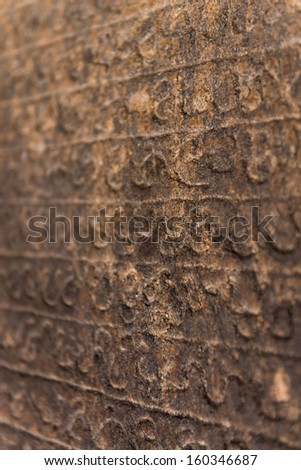 Ancient Sinhalese writing chiseled on stone, Dambulla, Sri Lanka  - stock photo
