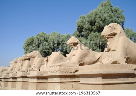 Ancient statues of Ram-headed sphinxes in Karnak temple, Luxor  - stock photo