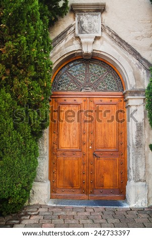 Ancient wooden door in old stone wall with plant in Switzerland - stock photo