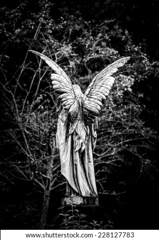 Angel gravestone full length back view in black and white - stock photo