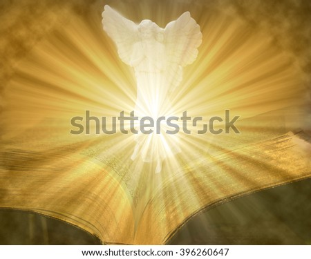 Angel praying on golden lighted open bible - stock photo