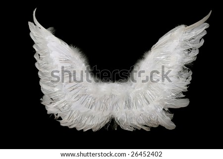 Angel's wings - stock photo