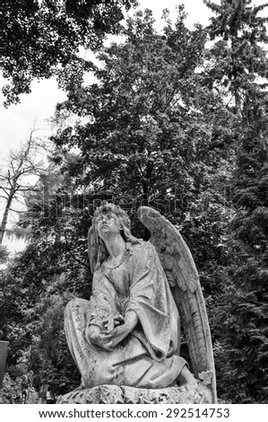 Angel statue in the cemetery - stock photo