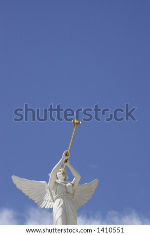 angel trumpeter - stock photo