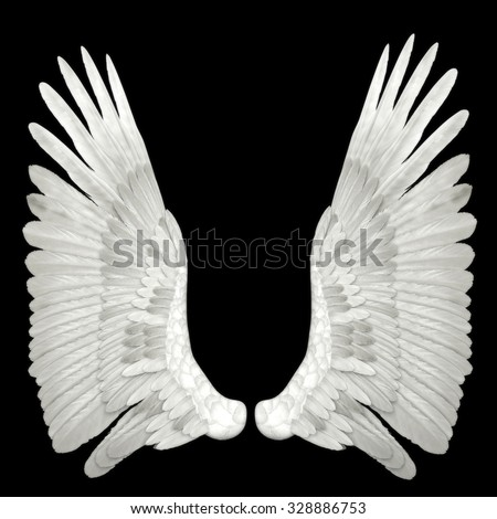 angel wings isolated on black background - stock photo