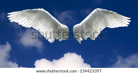 Angel wings with background made of sky and clouds. - stock photo