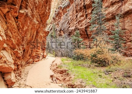 Angels Landing Trail is a 5 mile trail that culminates on Zion National Park's iconic, dizzying ridge & offers stunning canyon views. - stock photo
