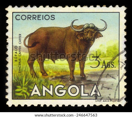 "ANGOLA - CIRCA 1953: A stamp printed in Angola shows a african buffalo, ""angolan fauna"" issue, circa 1953 - stock photo"