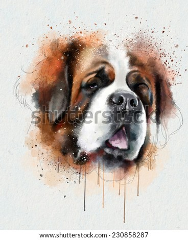 Animal collection: saint bernard - stock photo