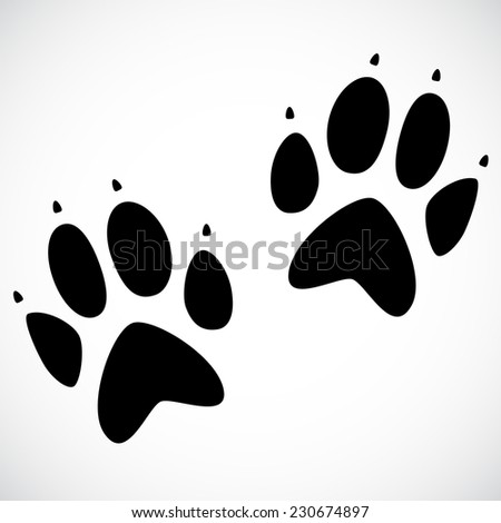 Animal footprint isolated on white background.  - stock photo