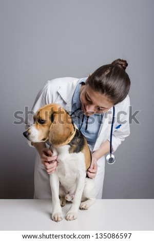 Animal health professional - stock photo