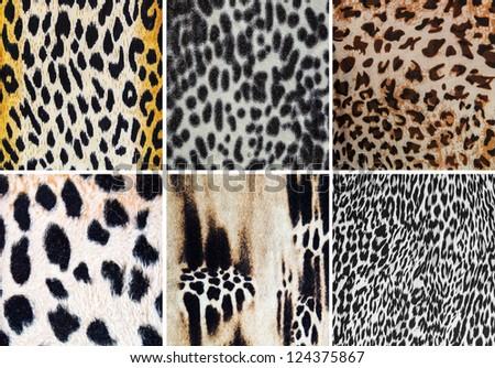 Animal pattern collage - stock photo