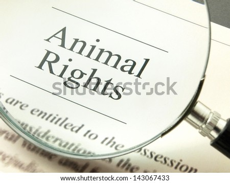 Animal Rights - stock photo