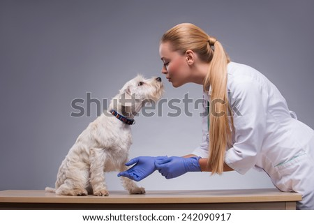 Animals are her first love. A young beautiful vet being affectionate with an equally affectionate canine against grey background - stock photo
