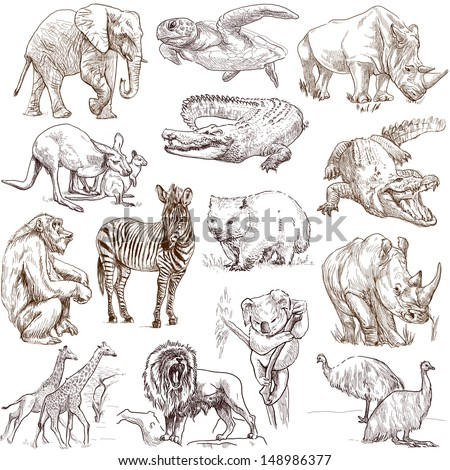 Animals around the world (collection no.1, white) - Collection of an hand drawn illustrations. Description: Full sized hand drawn illustrations drawing on white background. - stock photo