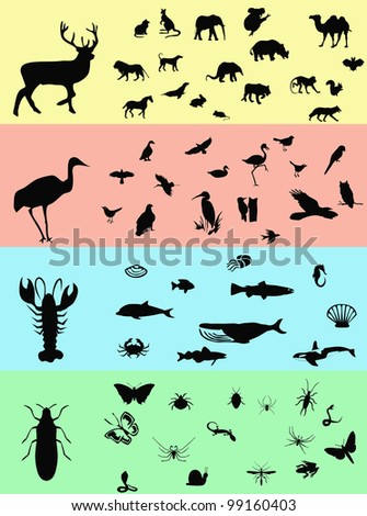 Animals banners - stock photo