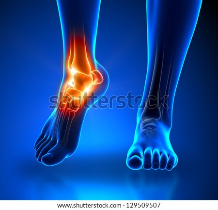 Ankle pain in detail - Anatomy concept - stock photo