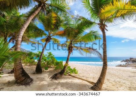Anse Intendance beach in Mahe Island, Seychelles - stock photo