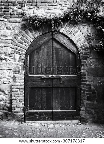Antique Door in Black and White - stock photo