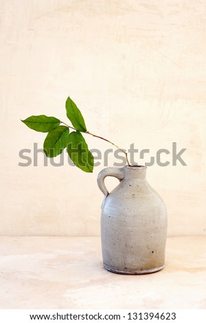 Antique pitcher with new leaves. - stock photo
