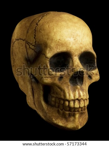 Antiqued-looking model of skull on black background with clipping path. - stock photo