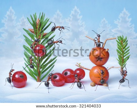 ants make Christmas tree and Santa Claus for New Year, ant tales                               - stock photo