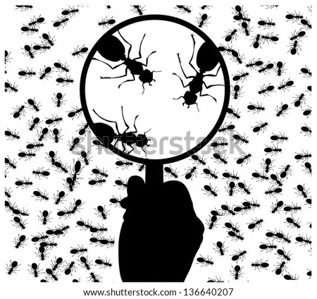 ants with a magnifying glass - stock photo