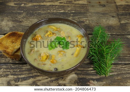 appetizing cream soup with chanterelle mushrooms  - stock photo