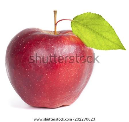 Apple. - stock photo