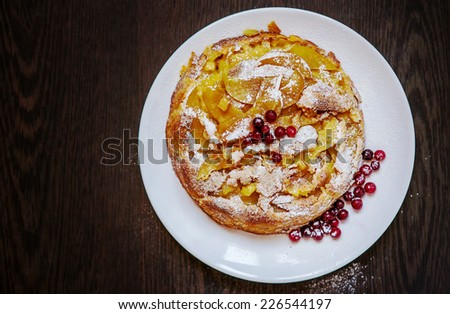 apple cake with cranberries on a plate  - stock photo