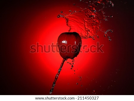 Apple Red with freshness. - stock photo