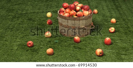 apple the top on grass in a tub - stock photo
