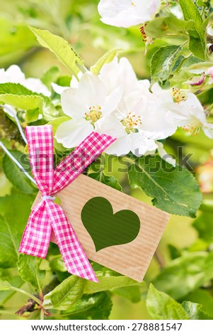 apple tree blossom greeting card background - loving nature - stock photo