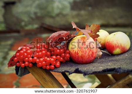 Apples and viburnum on the old stool, autumn still life - stock photo
