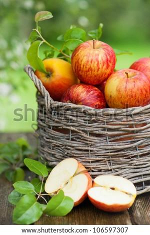 Apples, basket - stock photo