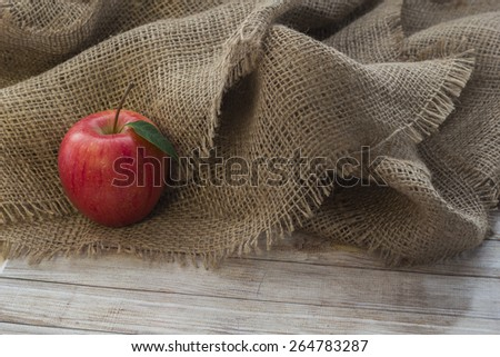 apples in a bag - stock photo