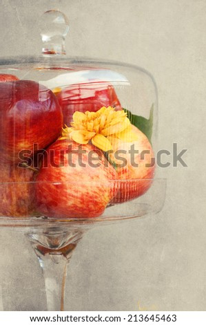 Apples in the bell jar. Autumn composition - stock photo