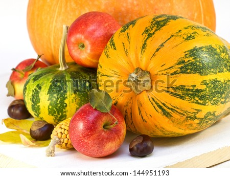 apples, pumpkins, corn on a wooden board - stock photo