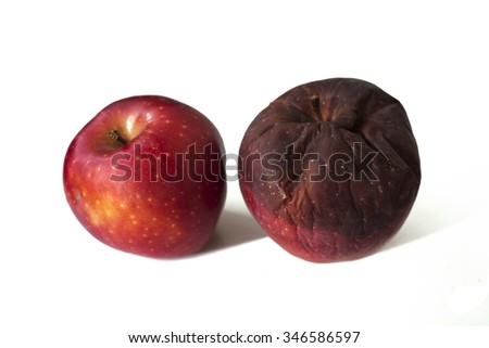 apples,two apples,rotten apple,red,fresh apple,red apple,fresh and old,object,life, - stock photo