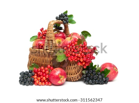 apples, viburnum berries and choke-berry in a basket on a white background. horizontal photo. - stock photo