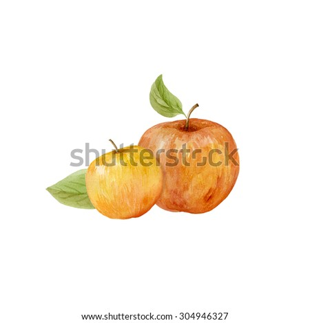 Apples watercolor with leaves on a white background. Hand drawn illustration - stock photo