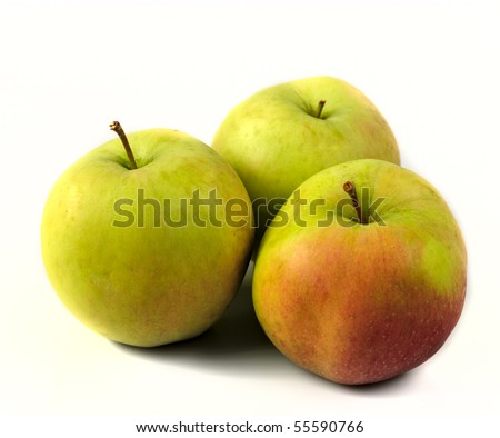 Apples with from tree isolated on white background - stock photo