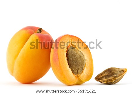 Apricot isolated on white - stock photo