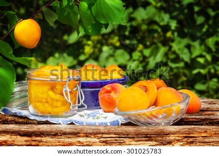Apricots boil under the apricot tree - stock photo
