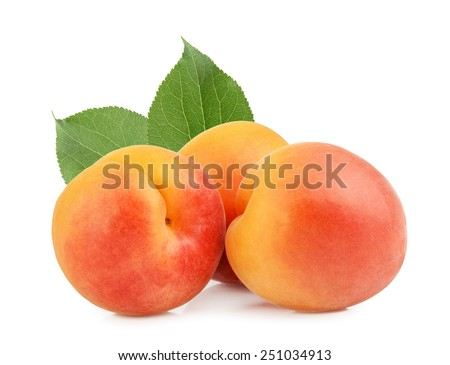 apricots isolated - stock photo