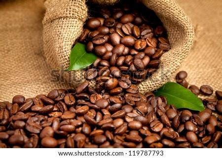 arabica coffee beans in a burlap bag - stock photo