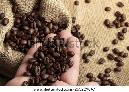 Arabica coffee in jute bag and in hand close up - stock photo