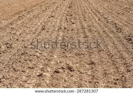 arable land texture - stock photo