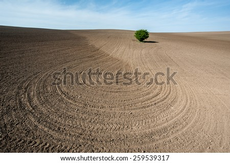 Arable work in spring. Plowed land on the field during agricultural work in spring.   - stock photo